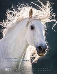 Kalender Die Anmut der Pferde